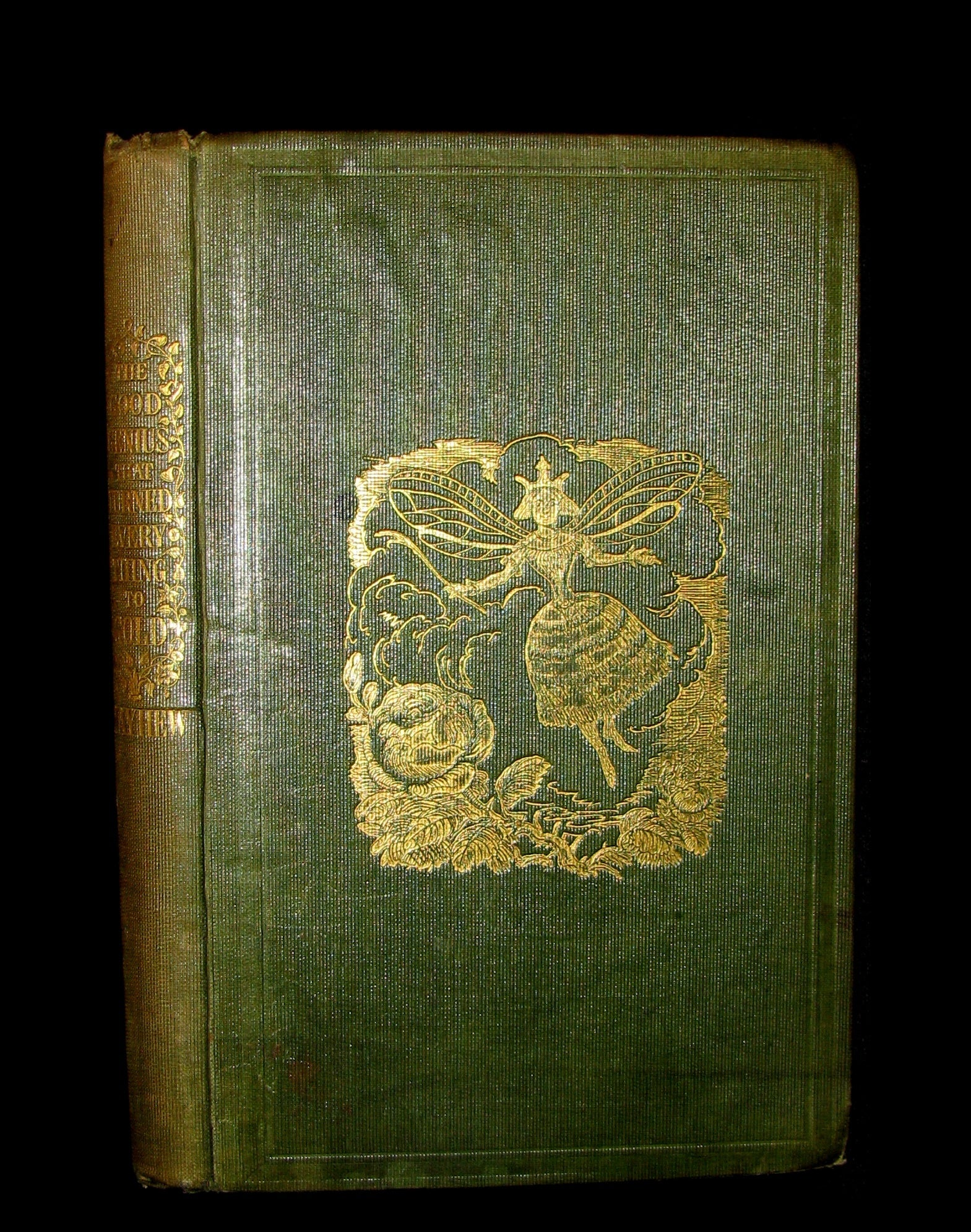 1847 Scarce 1stED - The Good Genius that Turned Everything into Gold; A Fairy Tale.