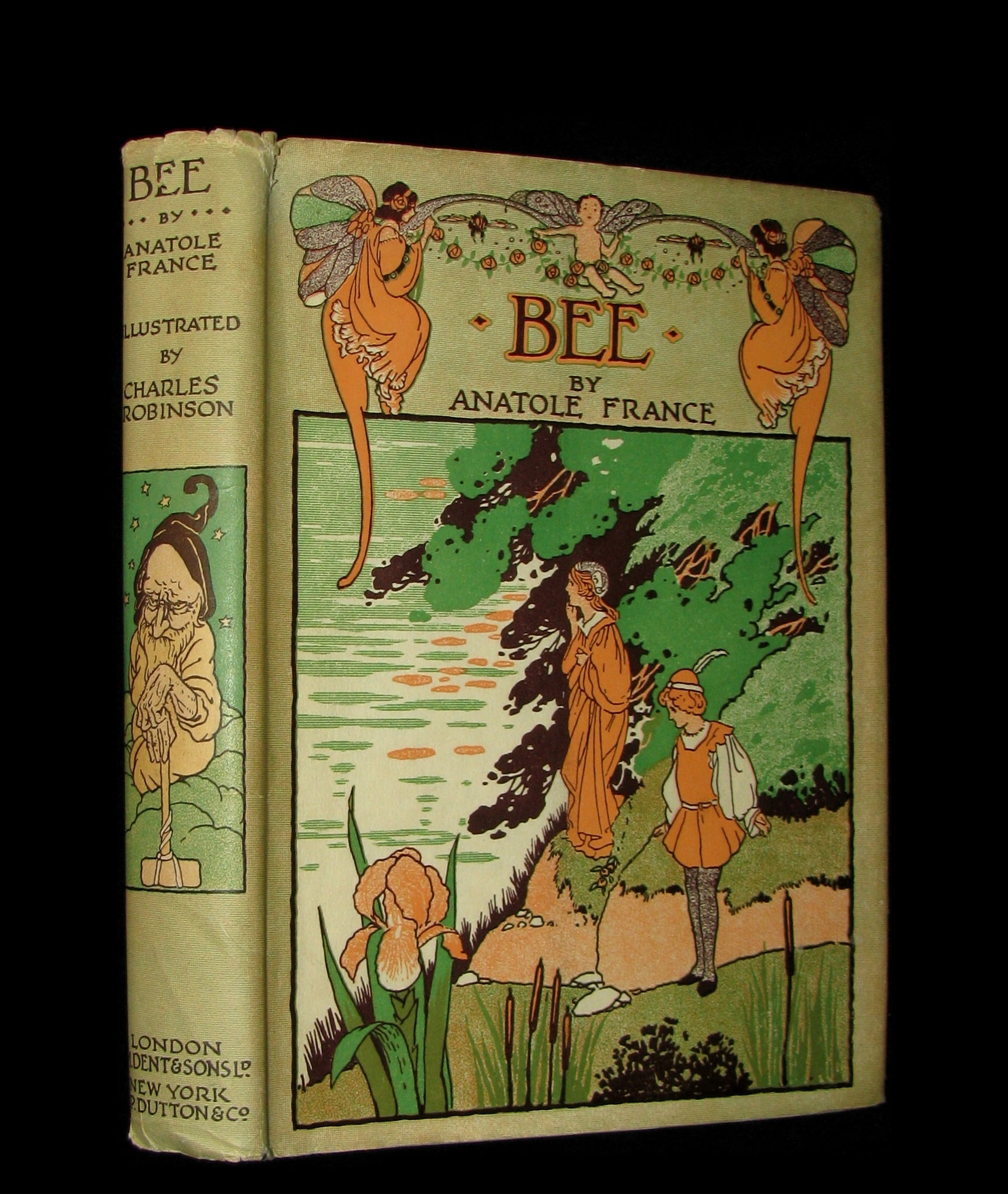 1934 Rare Book - BEE  The Princess of the Dwarfs by Anatole France illustrated by Charles Robinson.