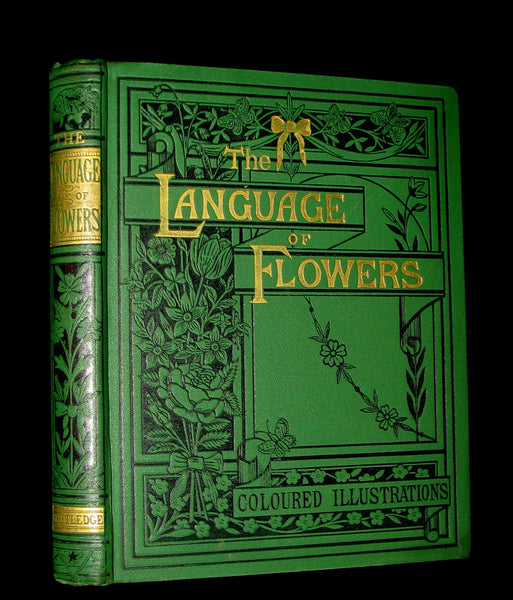 1875 Rare Floriography Book ~ The Language of Flowers by Robert Tyas, Color Illustrated.