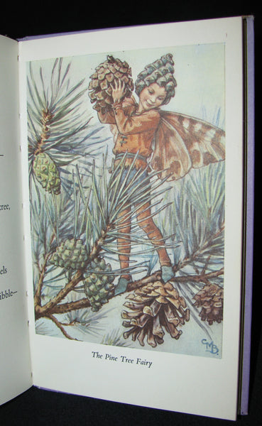 1965 Book - Cicely Mary Barker - FLOWER FAIRIES of the Trees
