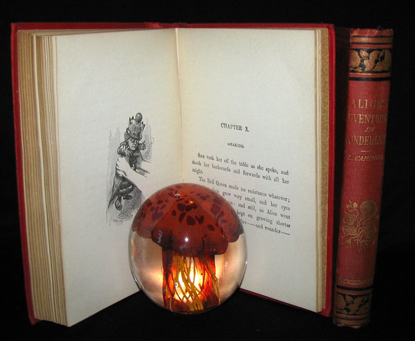 1889 Rare Victorian Bookset - Alice's Adventures in Wonderland & Through the Looking-Glass L Carroll