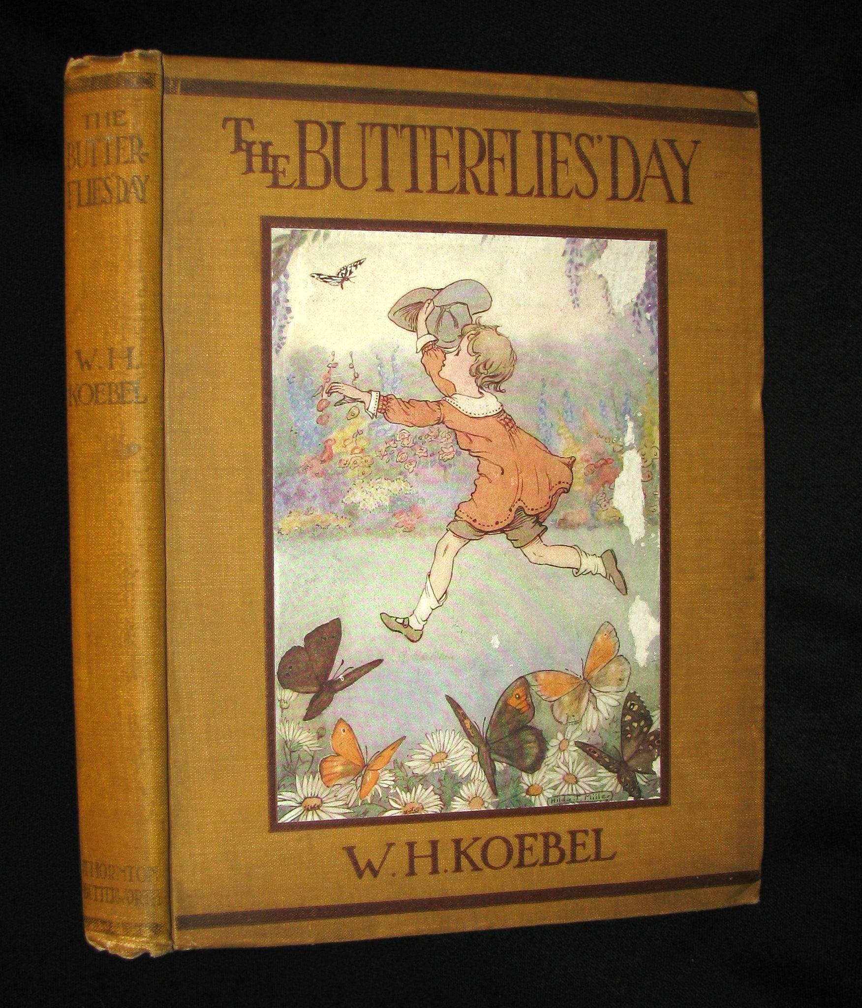 1921 Rare Book - The Butterflies' Day Illustrated by Hilda T. Miller. First Edition.