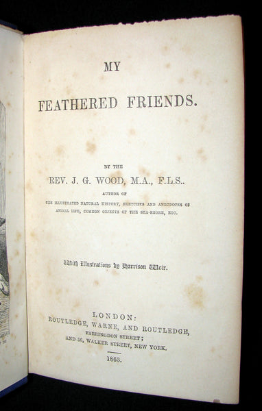 1863 Rare Book on Birds ~ My Feathered Friends by Naturalist Rev J. G. Wood