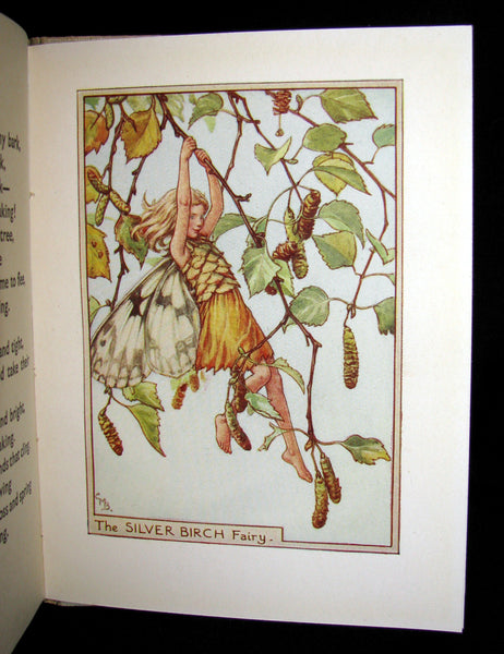 1930's Book - Cicely Mary Barker - FLOWER FAIRIES OF THE TREES