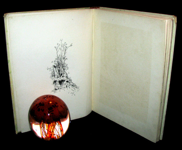 1870 Rare Victorian Book - Cinderella and other nursery tales published by Ernest Nister