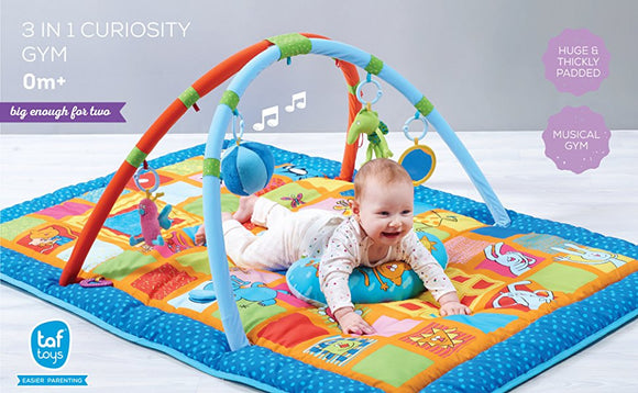 Taf Toys 3-in-1 Gym Playmat