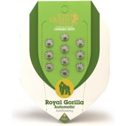ROYAL QUEEN ROYAL GORILLA AUTOMATIC 10S