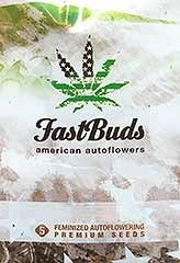 FASTBUDS GIRL SCOUT COOKIES 5S FEM