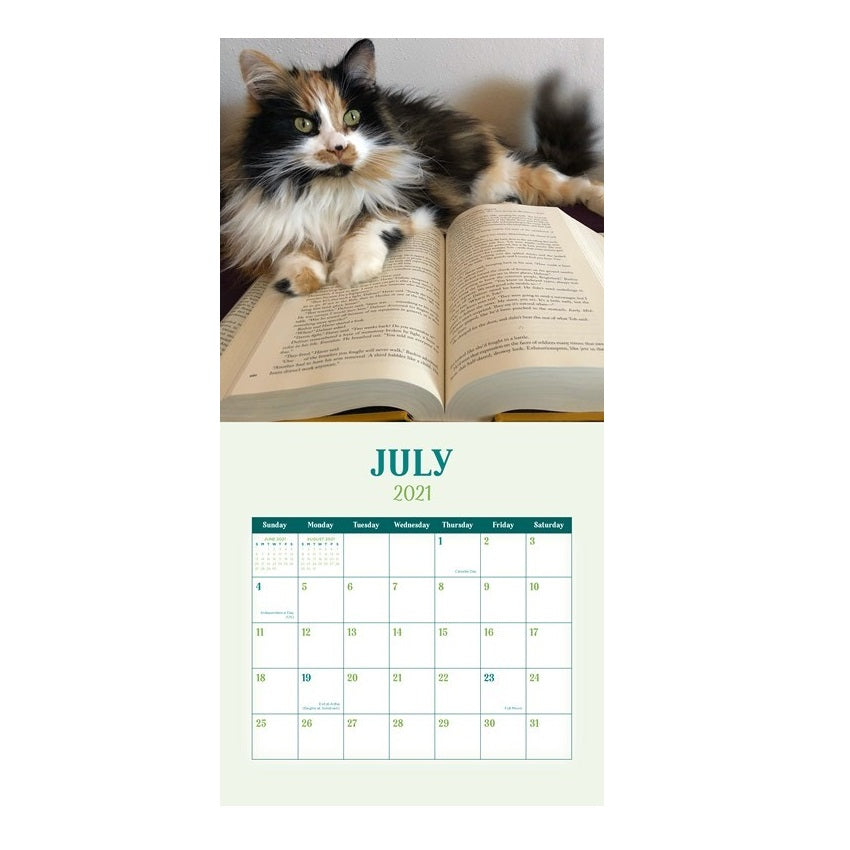 Cats & Books 2021 Wall Calendar