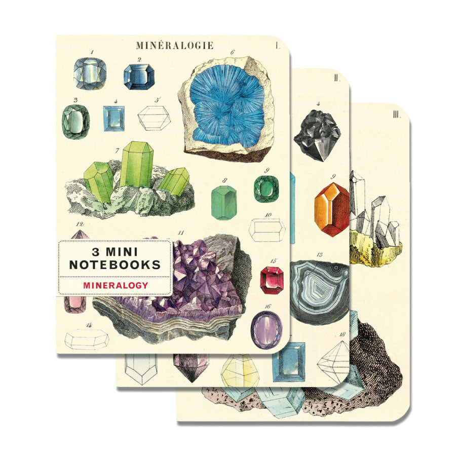 Mineralogy Mini Notebooks Set