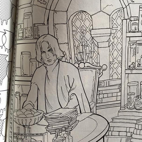 Harry Potter Coloring Book - The New York Public Library Shop