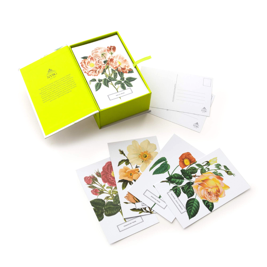 Roses: 100 Postcards from The Archives of The New York Botanical Garden