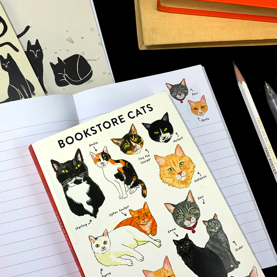 Cover features different types of cats drawn in different positions with their corresponding name. The pages also have small drawings of cats.