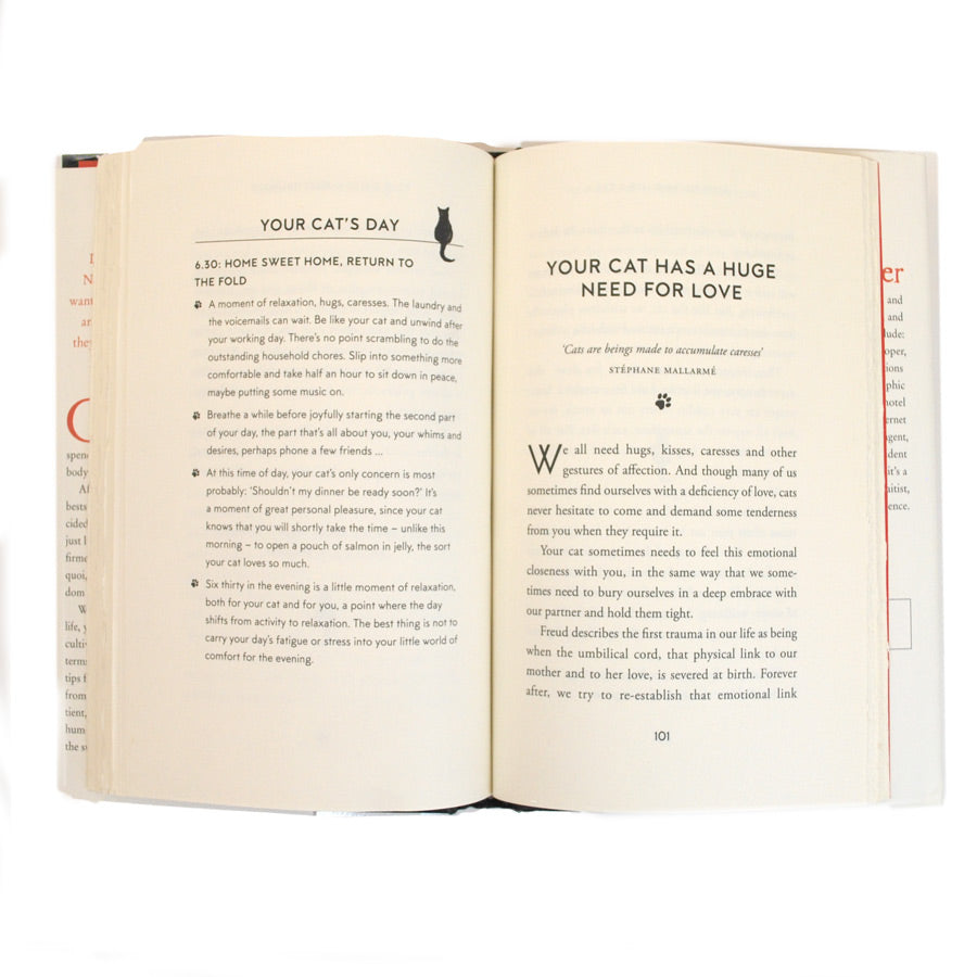How to Think Like a Cat - The New York Public Library Shop