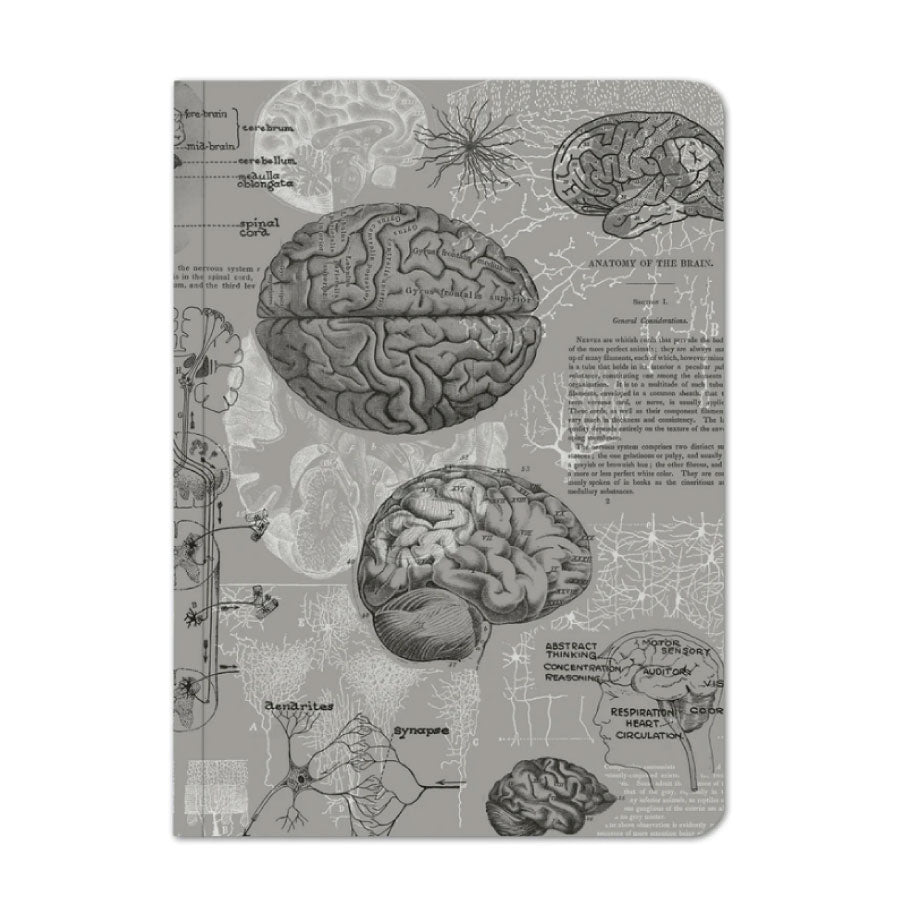 Brain Notebook