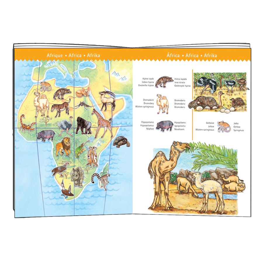 World's Animals Observation Puzzle + Booklet