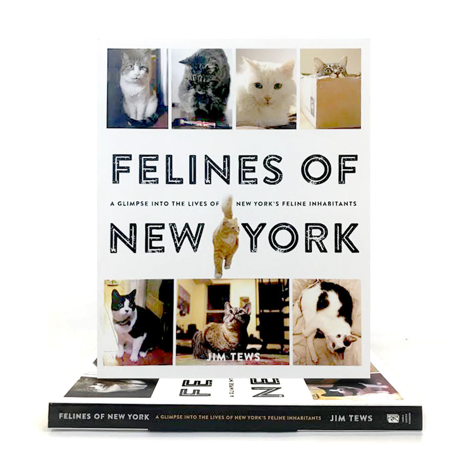 Felines of New York - The New York Public Library Shop