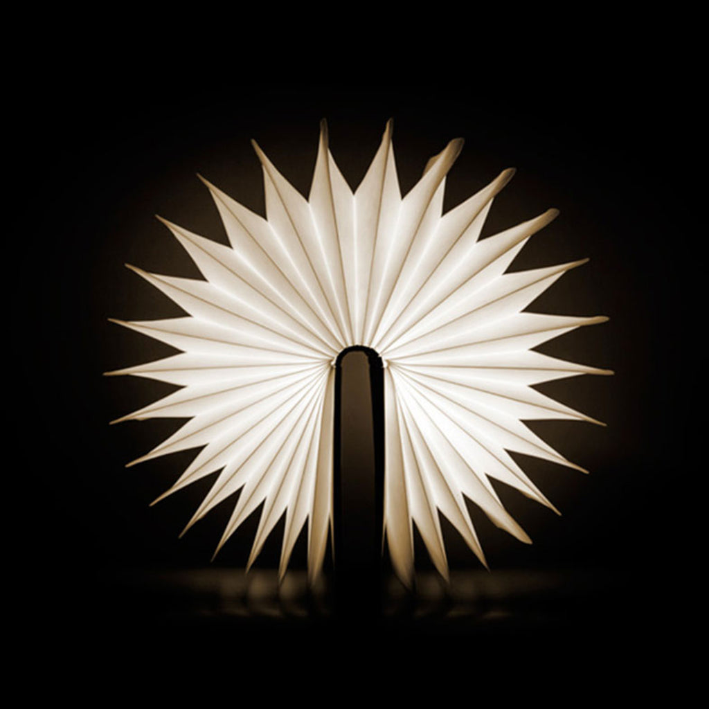 Book Light The New York Public Library Shop