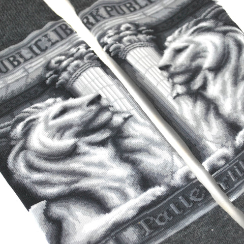 Close-Up of the library lions images.