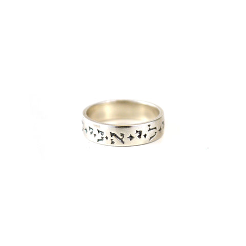Ani Le Dodi Ring - The New York Public Library Shop