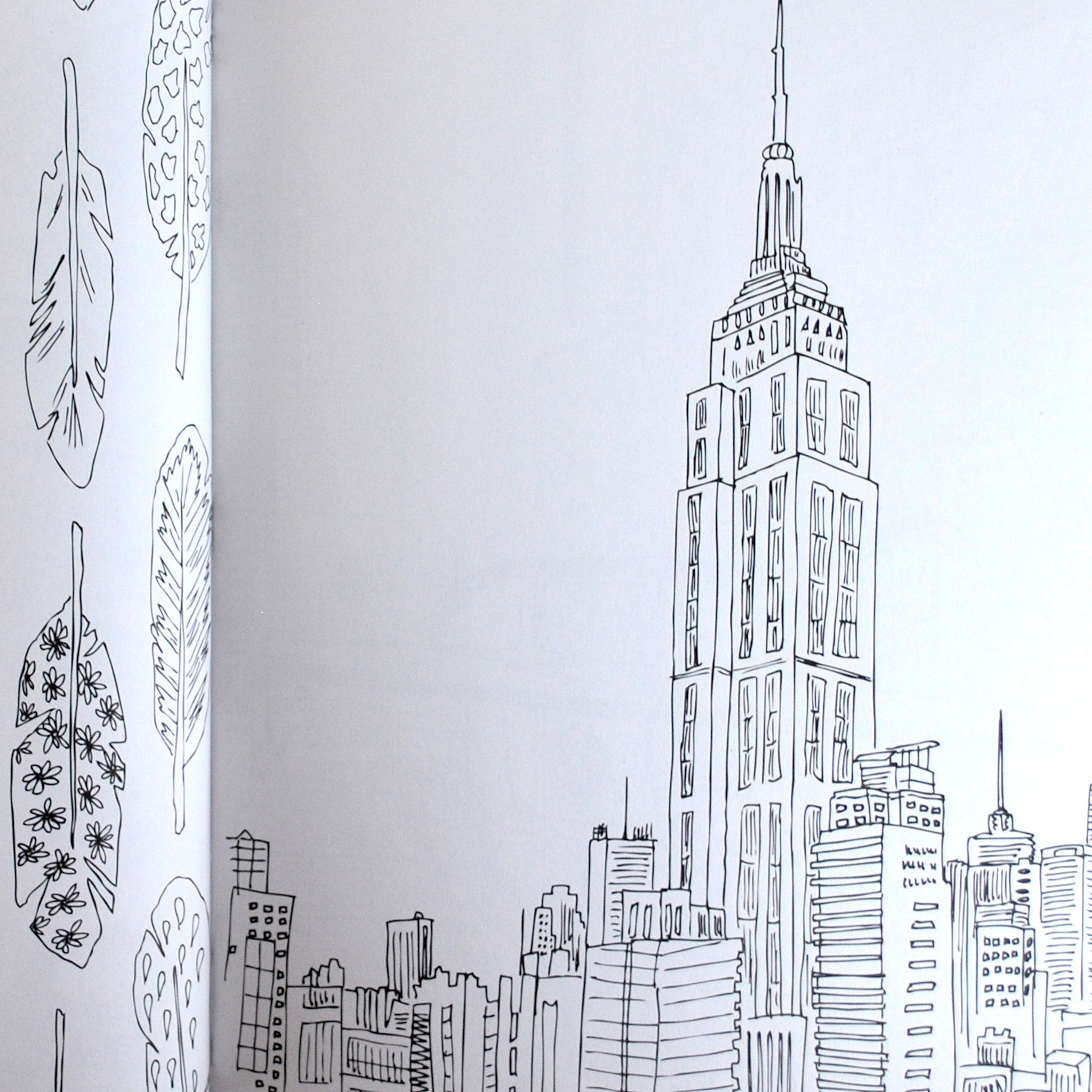 Secret New York Coloring Book
