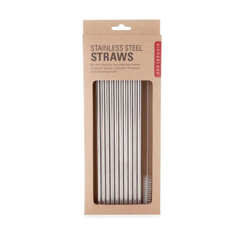 Stainless Steel Straws: Set of 10