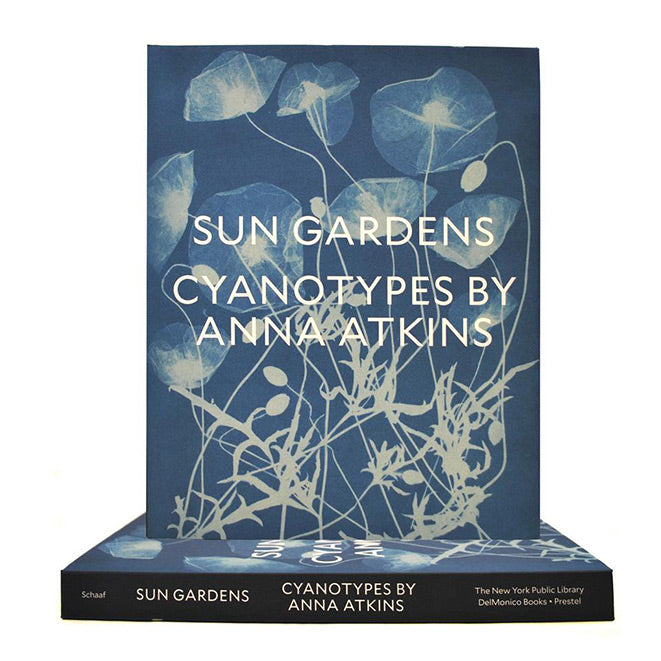 Sun Gardens: Cyanotypes of Anna Atkins - The New York Public Library Shop