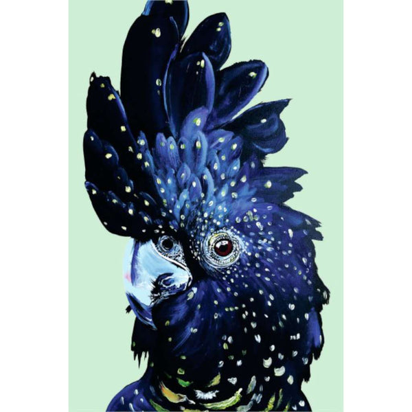 Amelian the Red Tailed Black Cockatoo, Vixen Designs. Australian Art Prints. Green Door Decor.  www.greendoordecor.com.au