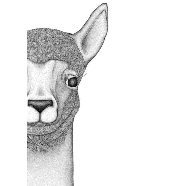 Austin the Alpaca, by Dots by Donna. Australian Art Prints. Green Door Decor.  www.greendoordecor.com.au