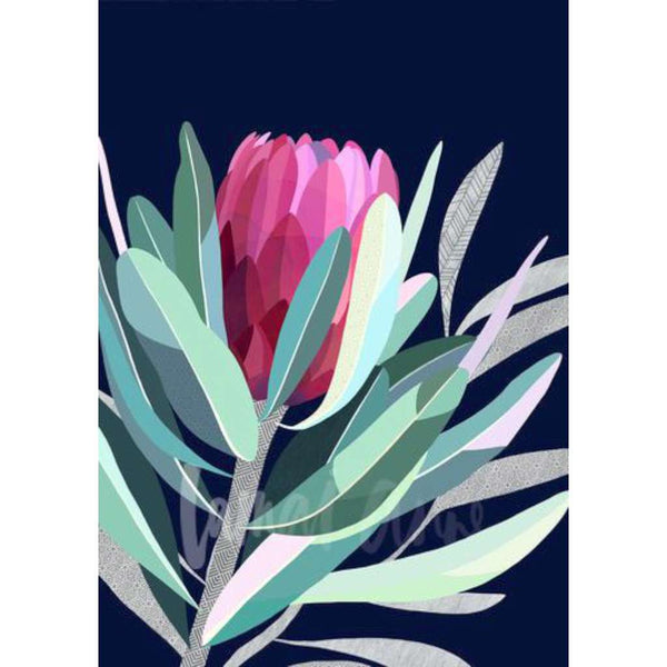 Ava Protea (Limited Edition)