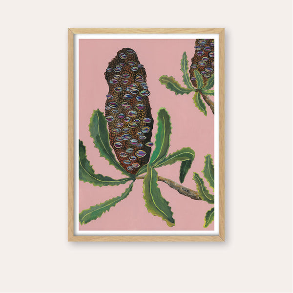 Banksia Pods Fine Art Print - framed - by Daniela Fowler Art. Australian Art Prints. Green Door Decor. www.greendoordecor.com.au