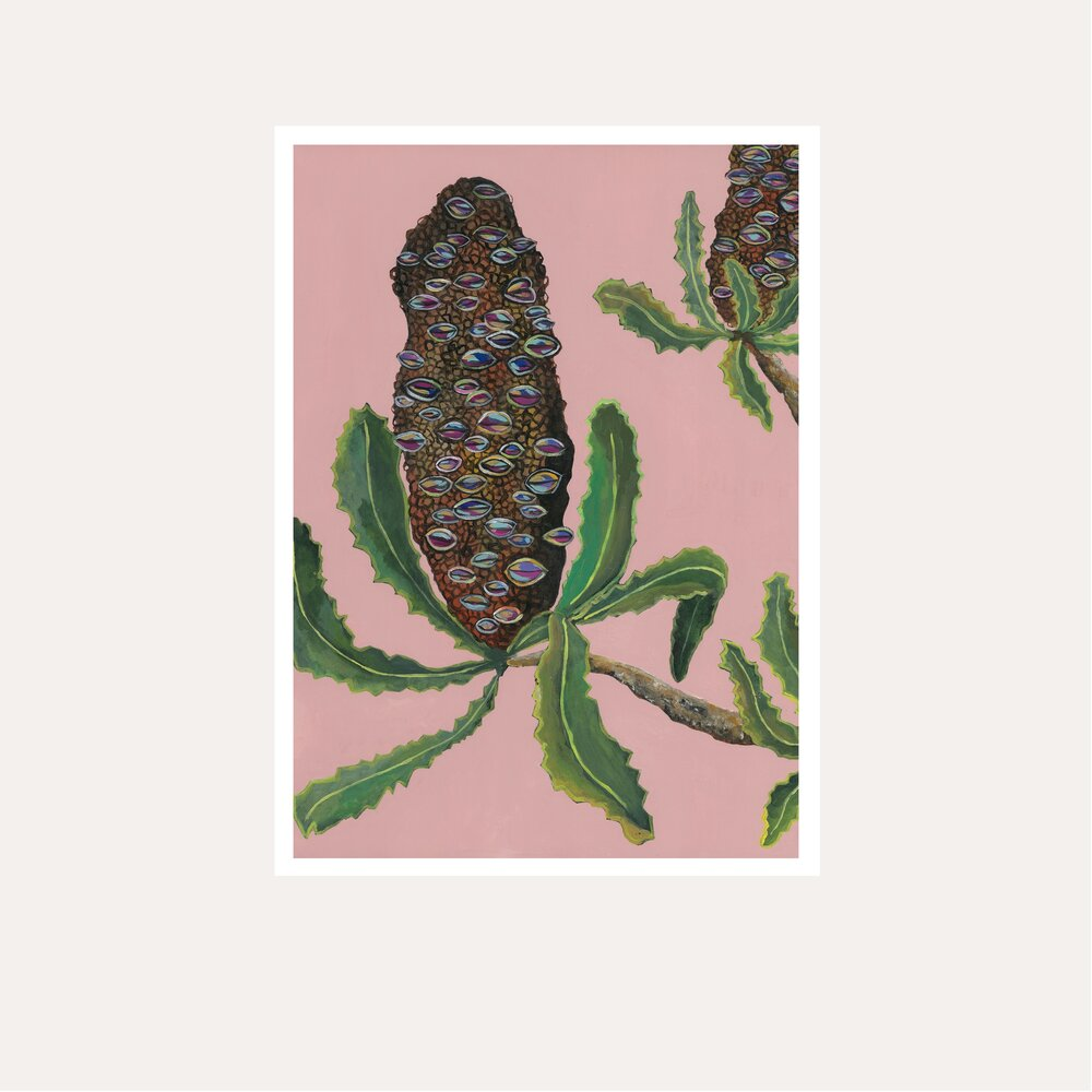 Banksia Pods Print - unframed - by Daniela Fowler Art. Australian Art Prints. Green Door Decor. www.greendoordecor.com.au