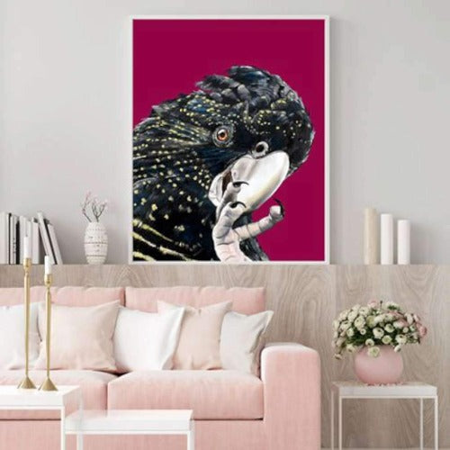Black Cockatoo, by Amber Gittins. Australian Art Prints. Green Door Decor.  www.greendoordecor.com.au