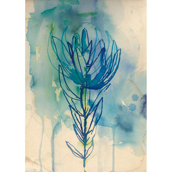 Blue Wash Protea - unframed - by Paula Mills Art. Australian Art Prints. Green Door Decor. www.greendoordecor.com.au