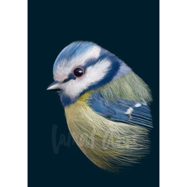 Blue Tit (Limited Edition)