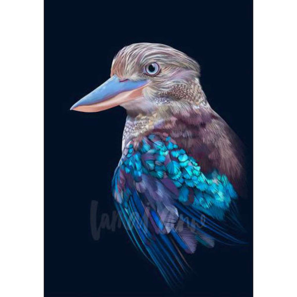 Blue Winged Kookaburra (Limited Edition)