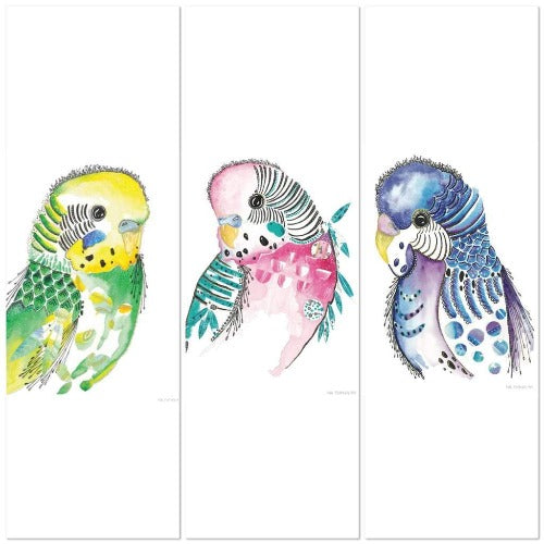 Budgies Set of 3 prints, by Kylie Ferriday. Australian Art Prints. Green Door Decor.  www.greendoordecor.com.au