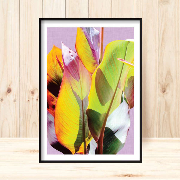 'Cannas Leaves #2' Print