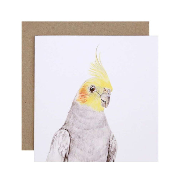 FMBD Card - Colin the Cockatiel