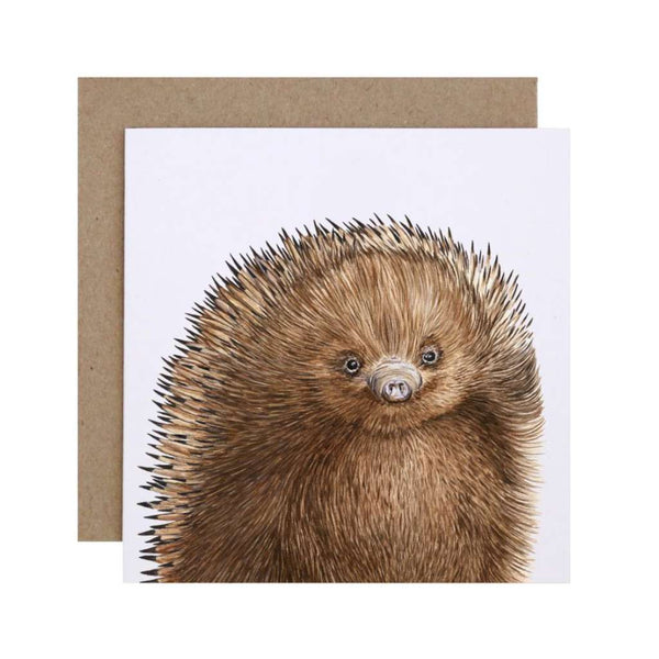 FMBD Card - Eddie the Echidna Card