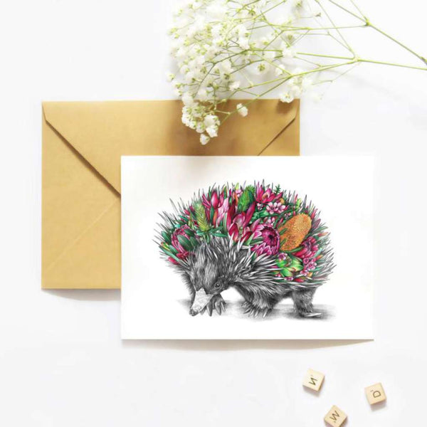 Eddie the Echidna card by McMurtrie Illustrations. Australian Art Prints. Green Door Decor.  www.greendoordecor.com.au