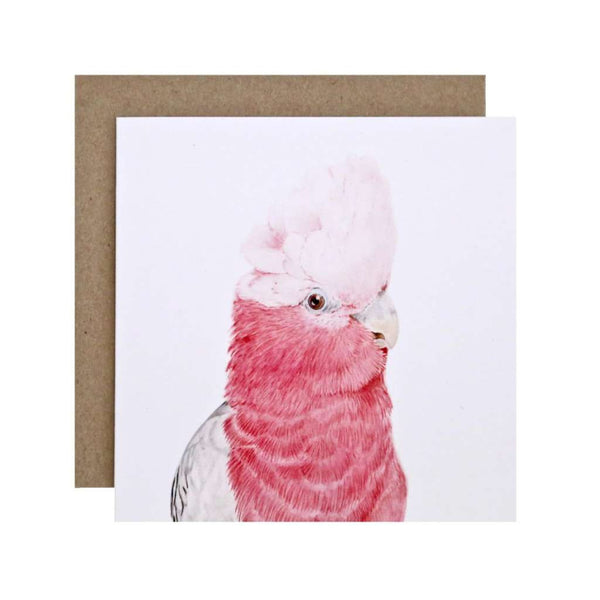 FMBD Card - Gary the Galah