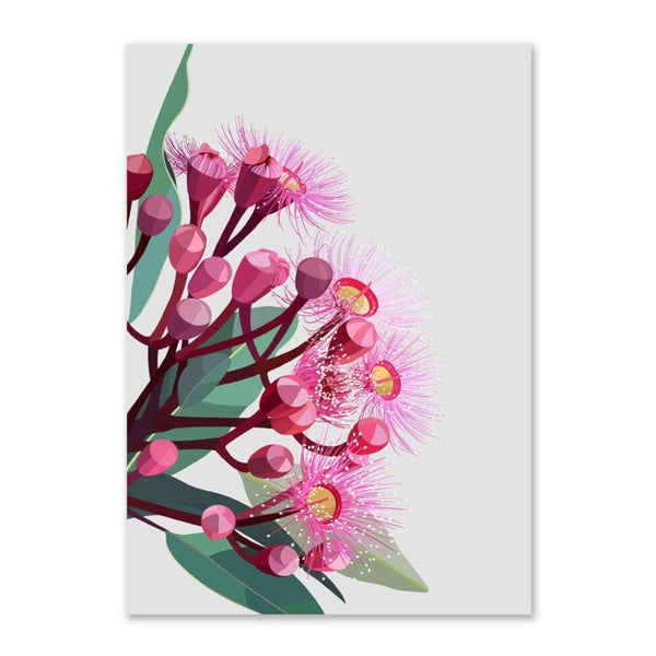 Flowering Gum on Grey Background (Limited Edition)