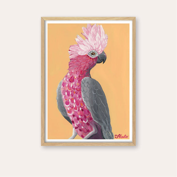 Gale the Galah Fine Art Print - framed - by Daniela Fowler Art. Australian Art Prints. Green Door Decor. www.greendoordecor.com.au