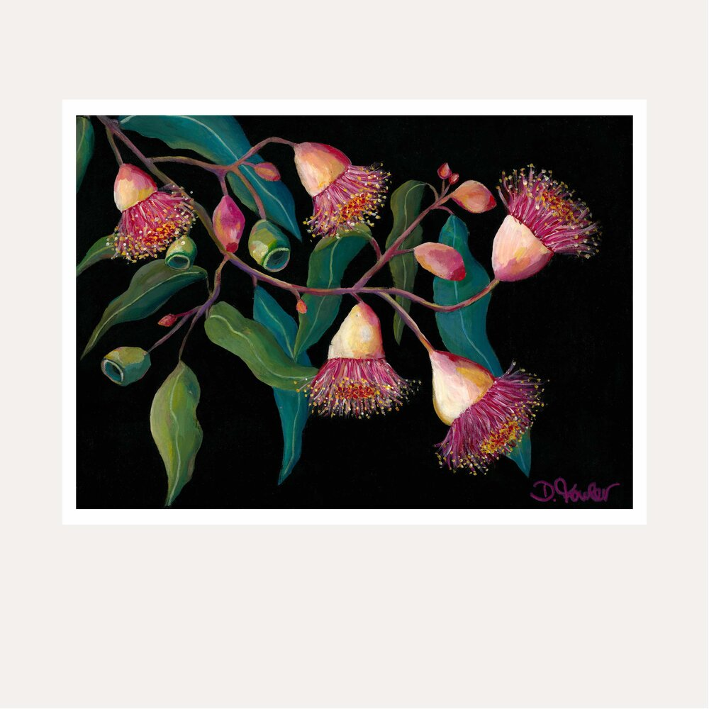 Glorious Gum Blossoms Fine Art Print - unframed - by Daniela Fowler Art. Australian Art Prints. Green Door Decor. www.greendoordecor.com.au