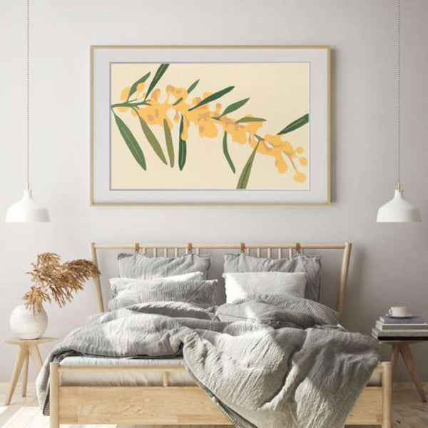 Golden Wattle, Native Glory by Kim Haines. Australian Art Prints. Green Door Decor.  www.greendoordecor.com.au