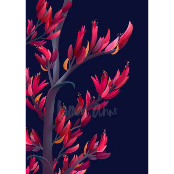 Harakeke New Zealand Flowering Flax (Limited Edition)