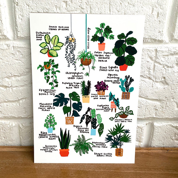 Hello Plant Lover Guide I print, by Hello Miss May. Australian Art Prints. Green Door Decor. www.greendoordecor.com.au