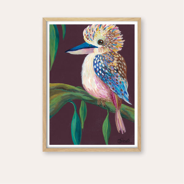 Kai the Kookaburra Fine Art Print - framed - by Daniela Fowler Art. Australian Art Prints. Green Door Decor. www.greendoordecor.com.au