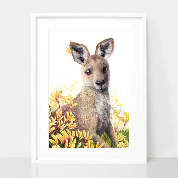 Kangaroo Joey and Kangaroo Paw Flower by Earthdrawn Studio. Australian Art Prints and Homewares. Green Door Decor. www.greendoordecor.com.au